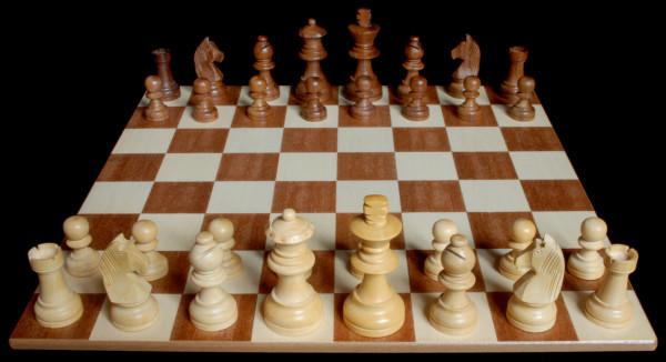 Ajedrez, todas las piezas posicionadas en el tablero :: Aprender a jugar ajedrez