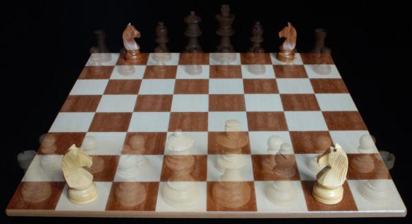 Posición del Caballo :: Pieza del Ajedrez :: Aprender a jugar ajedrez