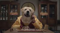 Publicidad con perros jugando ajedrez