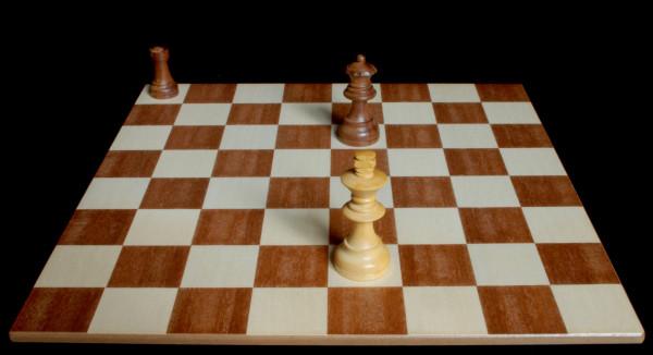 Ejemplo de Jaque al Rey blanco :: Aprender a jugar ajedrez