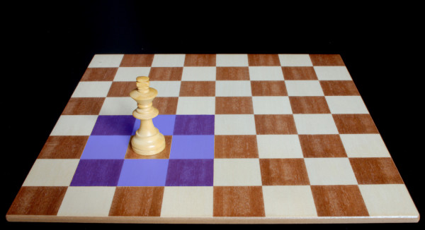 Donde y como el Rey se puede mover :: :: Pieza del Ajedrez :: Aprender a jugar ajedrez